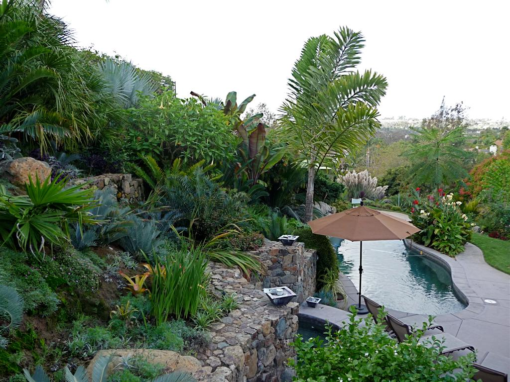 28 incredible landscape ideas with palm trees for Tree landscaping ideas