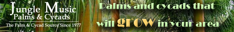 Palms and Cycads that will Grow in your area