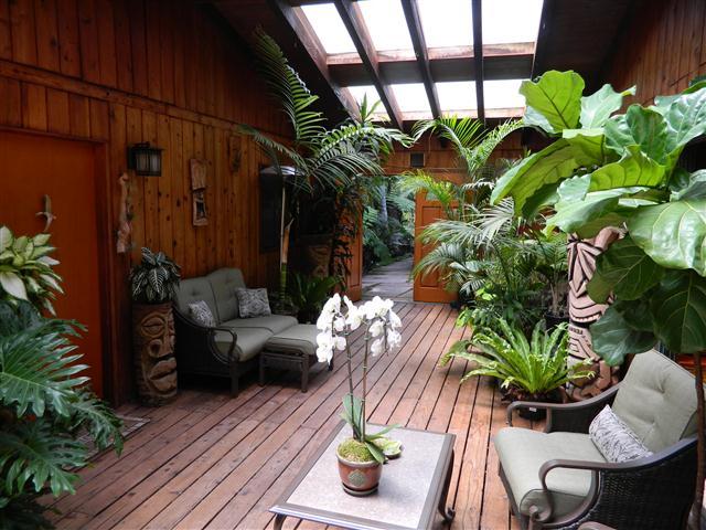 Wonderful Tropical Patio, Tropical Patio, Tropical Patio