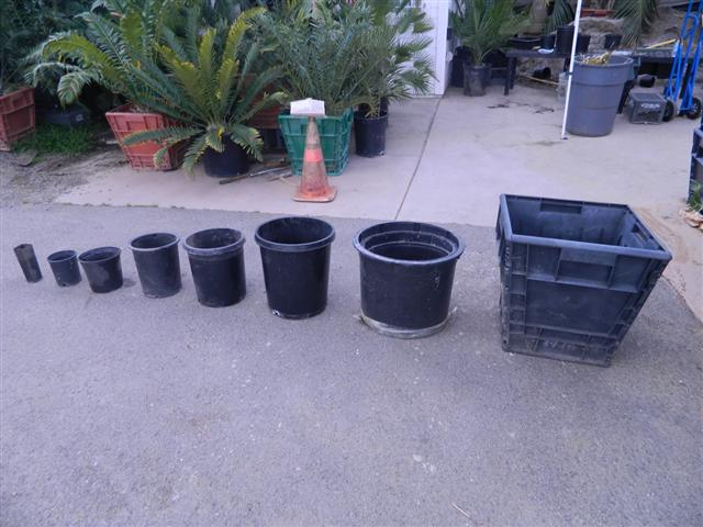 Plant Container Sizes And Descriptions