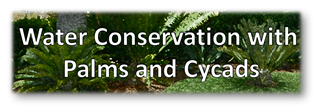 Water Conservation banner