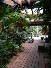 Perfect An Open Patio Looking Out To A Tropical Garden ...