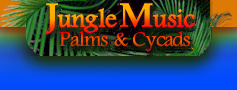 Jungle Music Palms and Cycads Nursery