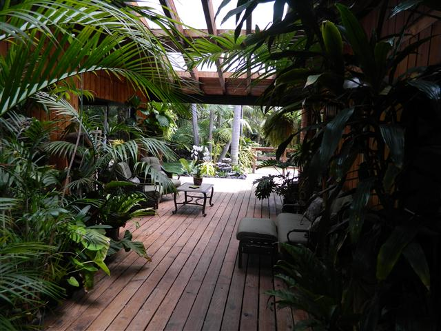 lookout to tropical garden